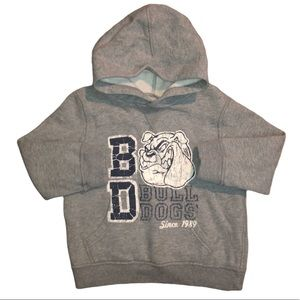 Place Gray Graphic Bull Dog Pullover Hoodie